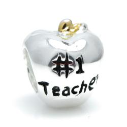 14k Gold 925 Sterling Silver Greatest Teacher Apple Fruit of Knowledge Enamel European Bead Charm